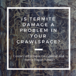is termite damage a problem in your crawlspace