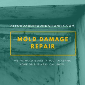 mold damage repair alabama