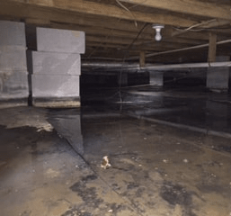 several inch flood in wet basement of Alabama home