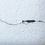 horizontal drywall crack in bulging interior wall