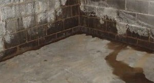 Photo of a cinderblock and cement basement with water damage on the walls and floor.