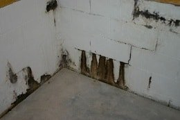 Photo displaying water seepage in a basement with cinder blocks.