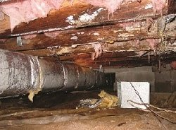 Photo of crawlspace with large pipe and pink insulation hanging from 'ceiling'
