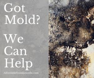 Crawlspace Mold Remover – Mold Soda Blasting