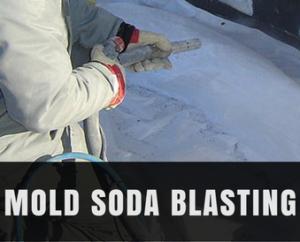 Service Highlight: Mold Soda Blasting