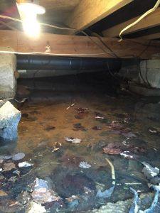 Water Intrusion in Foundation Blocks