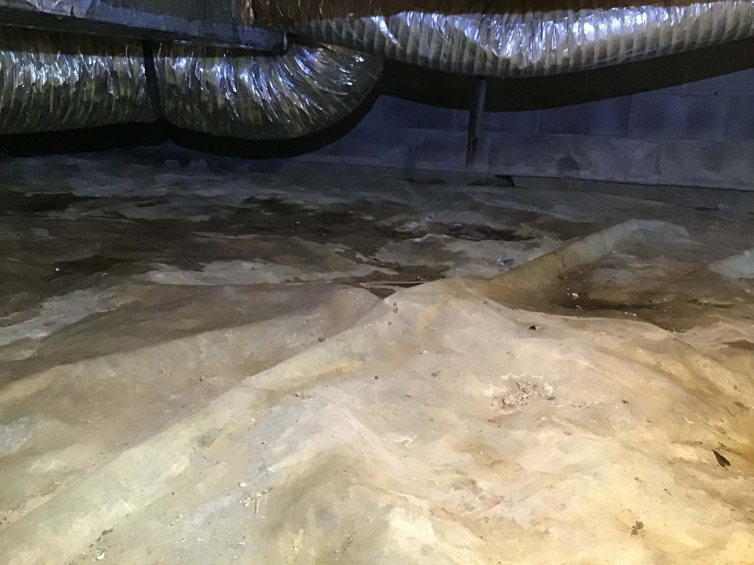 Damp Crawlspace