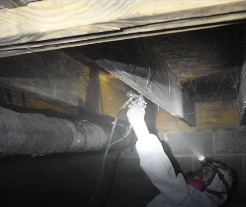 Crawlspace Joist Treatment