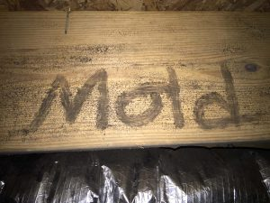 Mold on Crawlspace Joist